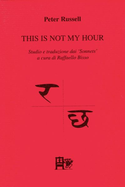 THIS IS NOT MY HOURR - Peter Russell - EDIZIONI DEL FOGLIO CLANDESTINO