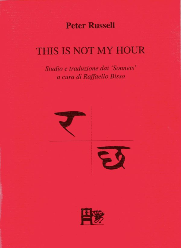 THIS IS NOT MY HOURR - Peter Russell - EDIZIONI DEL FOGLIO CLANDESTINO